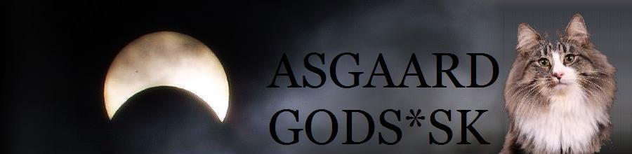 Asgaard God*Sk